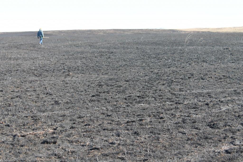 Inspecting a controlled burn on treeless Penn-Sylvania Prairie