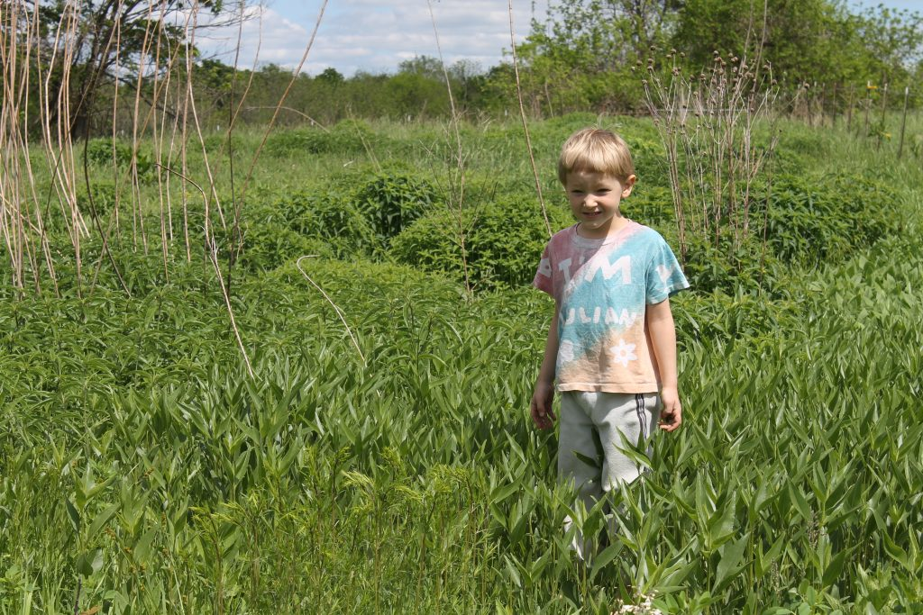 Julian in front of several clumps of good natives